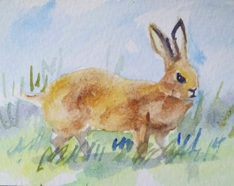 original watercolor painting ACEO rabbit  2.5x3.5 inches