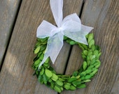 Boxwood Wreath - Preserved Boxwood - Wreath - Wedding Wreath - Boxwood - White Organza Ribbon - Wreath with Bow - Fixer Upper Decor - 8 inch
