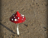 Red white fairy garden fantasy mushroom  ,polymer clay toadstool Home decor,Fairy Garden