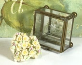 Vintage Glass and Brass Display Box - Hinged Lid, 4 Sided, Square, Etched Floral Design,  Brass Feet