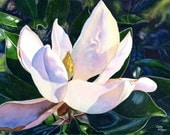 White Magnolia Original Watercolor Painting by Cathy Hillegas, 16x21, floral watercolor art, magnolia watercolor art, original painting