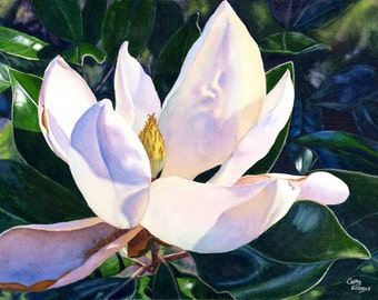 White Magnolia Watercolor Painting print by Cathy Hillegas, 16x21, floral watercolor art print, magnolia watercolor art, white blue purple