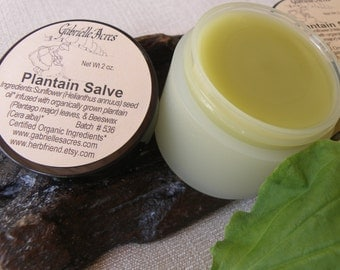 Plantain Salve - Organically Grown -  Natural - Organic Ingredients - Plantain Balm - Herbal Balm
