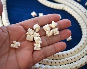 White Real Snake Vertebrae, Natural Bone Beads, 10 loose beads, approx. 12x12mm / Natural Large Hole Beads, Tribal, Bohemian, Juju, Oddities