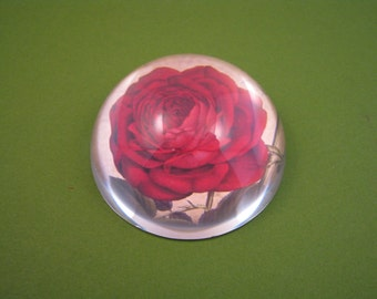 Red Rose Glass Dome, Red Rose Paperweight, Bourbon Red Rose, Dome Paperweight, Small Glass Dome, June Birthday, Rose Lover, Mothers Day Gift