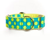 Tree Parlor Polka Dot: Martingale Collar, Dog Collar, No Slip Collar, Greyhound Collar