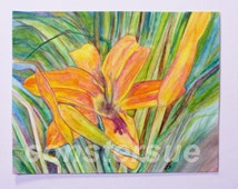 orange tiger lily drawing water color pencils 11 x 14 inches signed sold unframed