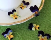 Dry Violas, Dry Flowers, Real, Wedding Favor, Decoration, Table Decoration, Centerpiece, Flower Girl, Viola, Craft Supply, 3 Dry Violas