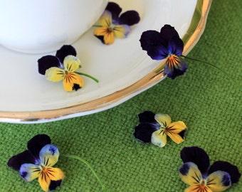 Dry Violas, Dry Flowers, Real, Wedding Favor, Decoration, Table Decoration, Centerpiece, Flower Girl, Viola, Craft Supply, 10 Dry Violas