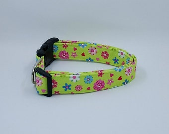 Loving Lime Floral Flower Pink Blue and White Flowers and Hearts on Green Dog Collar