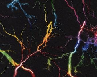 Lightning Strikes Stormy Night Sky Multicolor Fireworks Storm Fabric on Black Timeless T