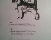 custom Parade coat Wolfhound