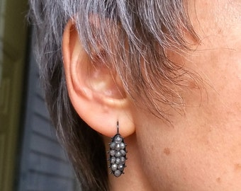 Paramecium - Sterling Silver Earrings with Labradorites