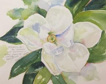 Magnolia: Reward of Patience