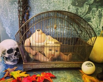 Bird Cage / Hendryx / Rustic / Wedding Bank