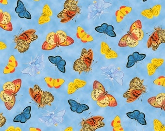 Butterflies on Sky Blue Nature Splendor  Quilt Fabric by the 1/2 yard