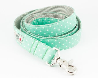 Mint Dots Dog Leash