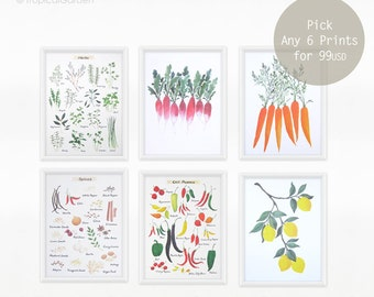Kitchen Art Print Set - Set of SIX Watercolor Kitchen Prints, 8x11 Watercolor Set / Modern Art Prints, Minimal Wall Decor