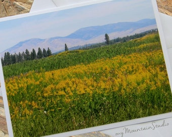 Meadows and Mountains Photo Note Card. Montana Nature Wildflowers. Yellow Flowers Note Card. Scenic Landscape Photography.