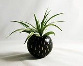 Sphere Succulent Air Plant Planter // Gold Line