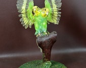 taxidermy of 2 head freak parrot made by 2 parrot,open wings posetion mounted in glass dome 3#