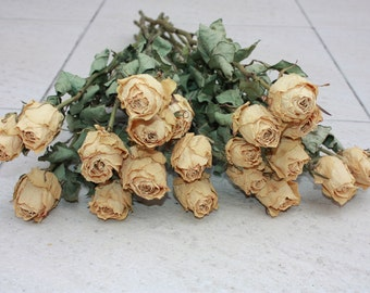 20 Gorgeous Dried Roses - Natural Color - Roses for Weddings, Luck-Love-Romance and all other Matters of the Heart - Flower Bouquet
