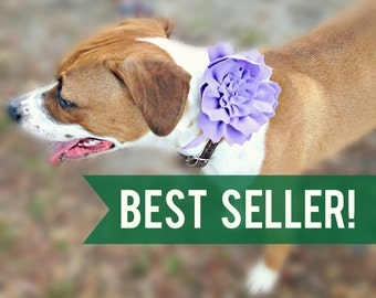 Fabric Rose Dog Collar Flower  - Pet Accessory - Dog Flower Girl - Dog Accessories - Cat Acessories - Dog Wear - Dog Wedding - Dog Corsage