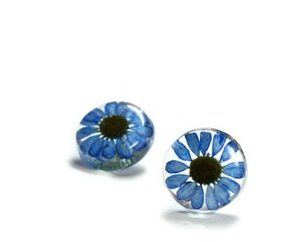 Blue Flower Earrings- Real Flower Earrings- Flower Jewelry- Resin Jewelry- Post Earrings- Stud Earrings