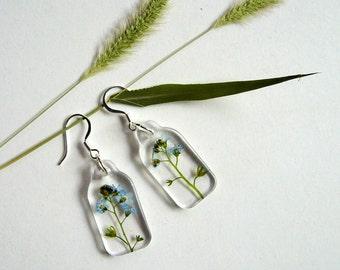 Forget Me Not - Real Flower Earrings - botanic jewelry, real flower, myosotis, Victoria Blue, floral earrings, small earrings, natural, ooak