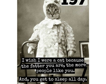Card #197 - I Wish I Were A Cat Because The Fatter You Are.... - Blank Inside Greeting
