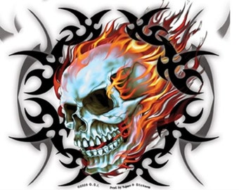 Mirror Skull Decal with Transparent Backing Bike Customization Sticker