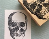 Large Skull Rubber Stamp 6553