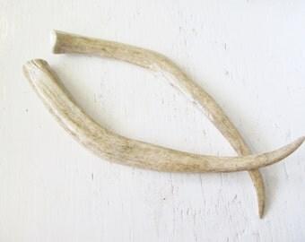 Large Hair Chop Sticks Deer Antler Horn Bone Dreadlock Accessory