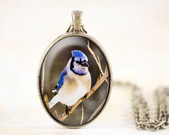Blue Jay Necklace - Bird Jewelry Bronze, Blue Jay Jewelry, Song Bird Necklace Pendant, Blue Bird Pendant, Bird Photography, Nature Jewelry
