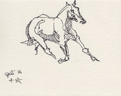 Horse Original Ink Sketch...