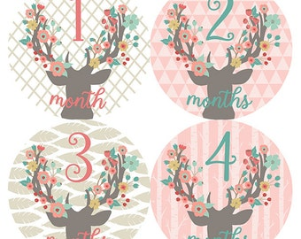 FREE GIFT, Floral Antlers Nursery Decor, Baby Girl, Floral Antlers, Woodland Nursery, Floral Antlers Month Stickers, Monthly Baby Stickers