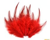 50 Pieces Red  Feather 8-15cm (YM44)