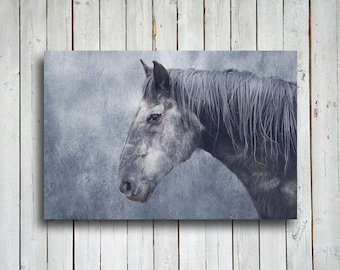 Hints of Grey - Horse art - Horse decor - Horse photography - Blue and grey - Grey horse - Animal photography - Horse canvas