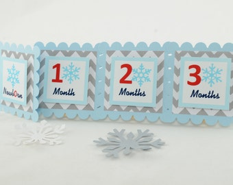 Snowflake 12 Month Photo Banner, First Year Photo Banner, First Year Banner, Winter Wonderland Photo Banner, L. blue and Grey, c-1271