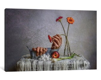 iCanvas Still Life Gallery Wrapped Canvas Art Print by Haik Ahekian