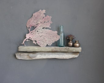 Driftwood Shelf / MEDIUM Size