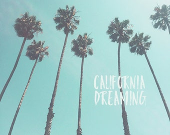 California Palm Trees, California Palm, California Art, California Print, California Photography, Los Angeles Palm Trees, Los Angeles Art