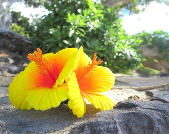 Hibiscus Hair Flower, Yellow, Hair Pin, Hair Piece, Head Piece, Hawaii, Double, Tiki, Luau, Pin Up, Retro, Hair Clip