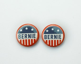 Vote Bernie Sanders pins
