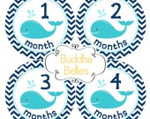 ON SALE! Nautical Month Stickers Baby Boy Whale Monthly Stickers Baby Month Stickers Milestone Baby Stickers Nautical Nursery Gift Baby Gift