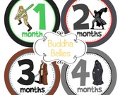 Star Wars Baby Fans Celebrate with Baby Month Stickers Baby Boy Baby Shower Baby Stickers Nursery Monthly Baby Stickers