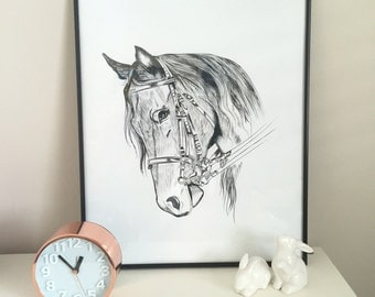 Horse Print Black & White Line Art Drawing - Large