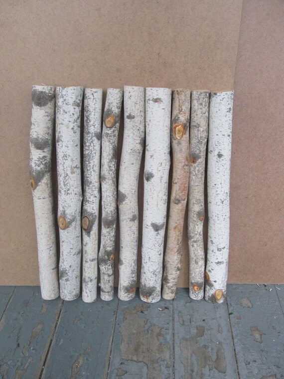 20 Birch Logs Decorative White Birch Branches Sticks