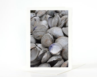 Wampum Clam Shell Photo Note Cards, Blank Photo Greeting Cards, Quahogs Cards, Card Sets, Nature Photography