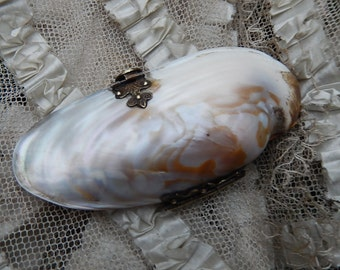 Lovely 19th century miniature shell purse mother of pearl brass fittings red interior circa 1860 keepsake gift